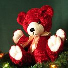 HOLIDAY TEDDY by judyann