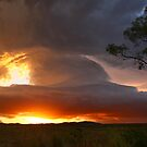 Coomera Low Precipitation Supercell by Anthony Cornelius