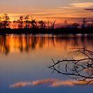Lake Fyans by Leanne Robson