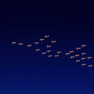 RAAF PC-9 Thunderbird Formation by EOS20
