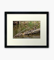 Community Log  Framed Print