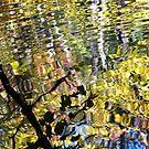 Untitled (Reflection) - 2013 by Joseph Rotindo