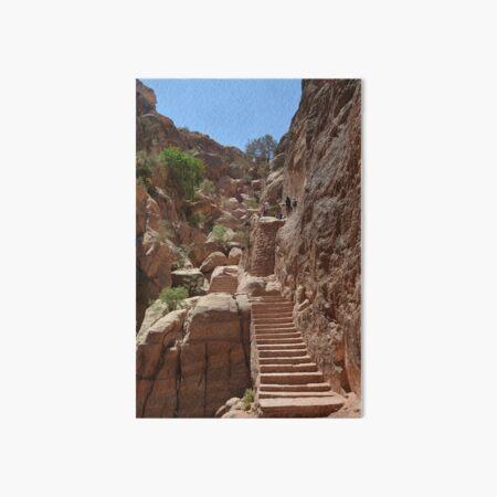 Ancient Staircase, Petra, Jordan Art Board Print