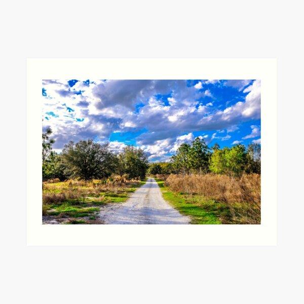 Dirt Road 1 Art Print