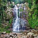 Minnamurra Falls by Dilshara Hill