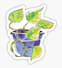 Watercolor Potted Purple Philodendron  Sticker