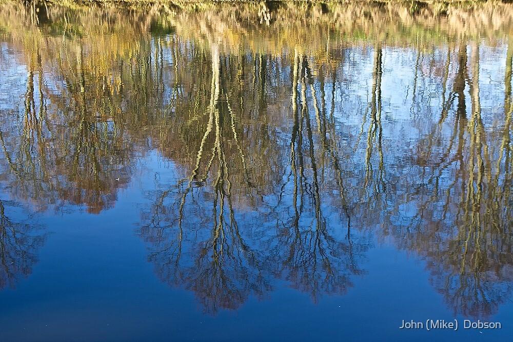 Upside down World by John (Mike)  Dobson