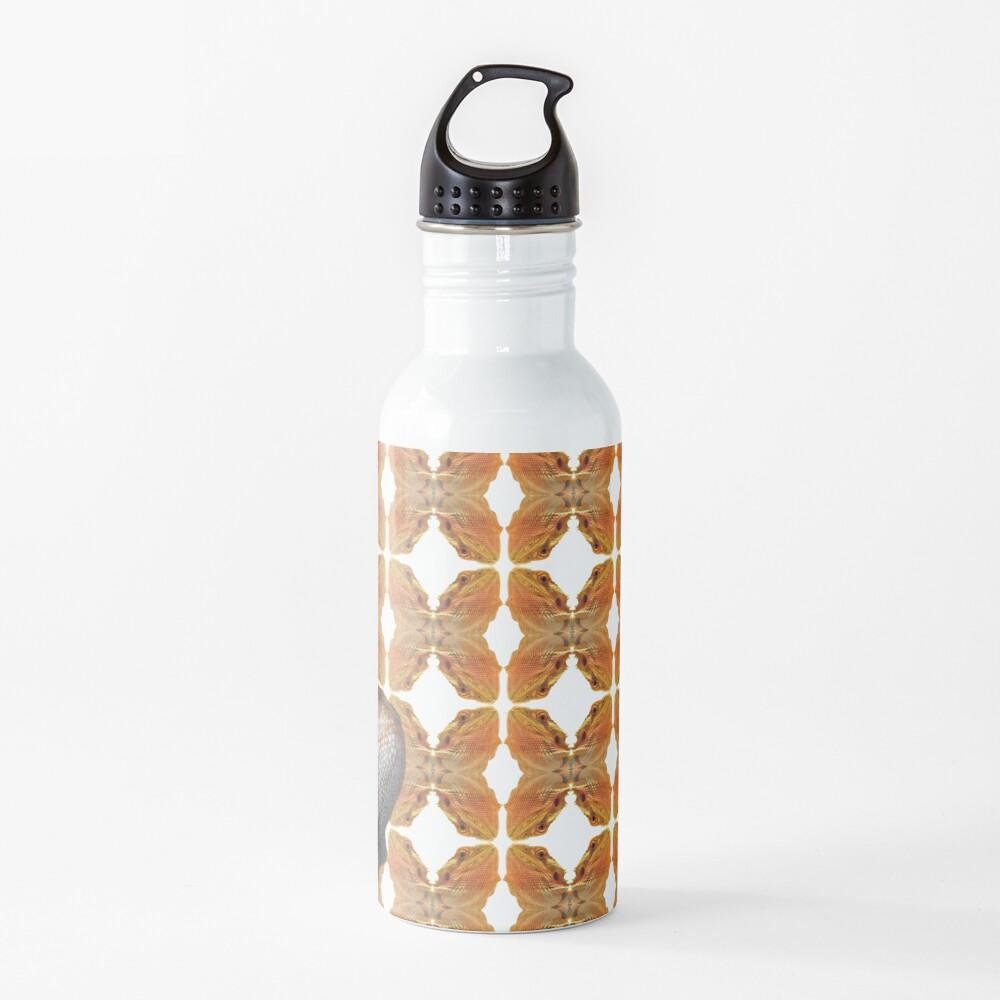 Bearded Dragon Patterned Background With Beardie Head Water Bottle