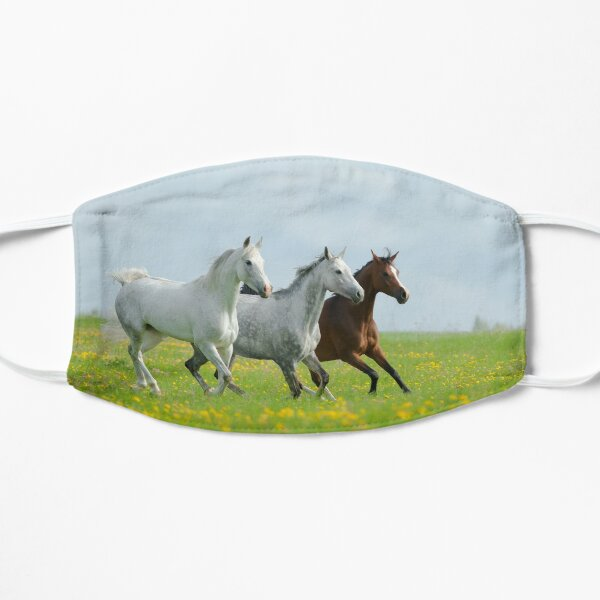 beautiful arabian horses in the field of dandelions Mask