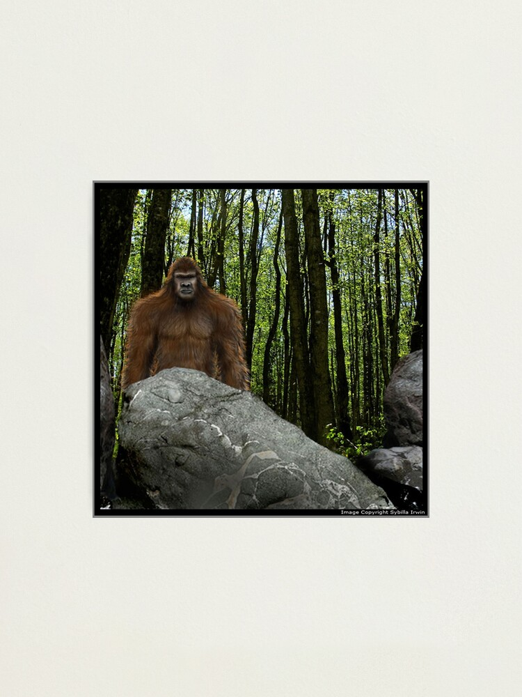 Alternate view of Oregon Sasquatch Photographic Print