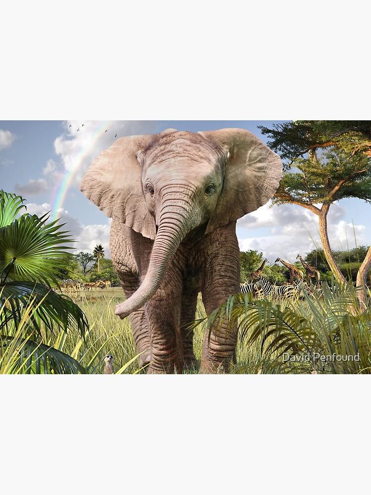 Baby Elephant by DavidPenfound