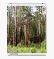 Mountain Ash Forest iPad Case/Skin