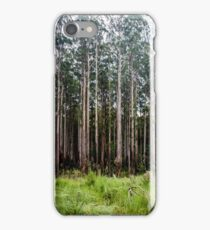 Mountain Ash Forest iPhone Case/Skin