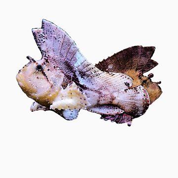 Leaf Scorpionfish by Hoyo12
