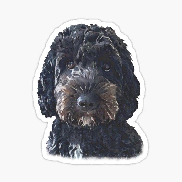 Black Cockapoo / Doodle Dog Sticker