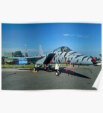 F-15C 84-021 in tiger stripes Poster