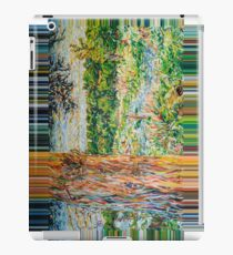 '...after a whiles...', Brislington Brook iPad Case/Skin