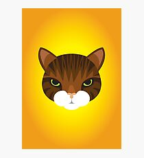 Mean Tabby Cat Photographic Print