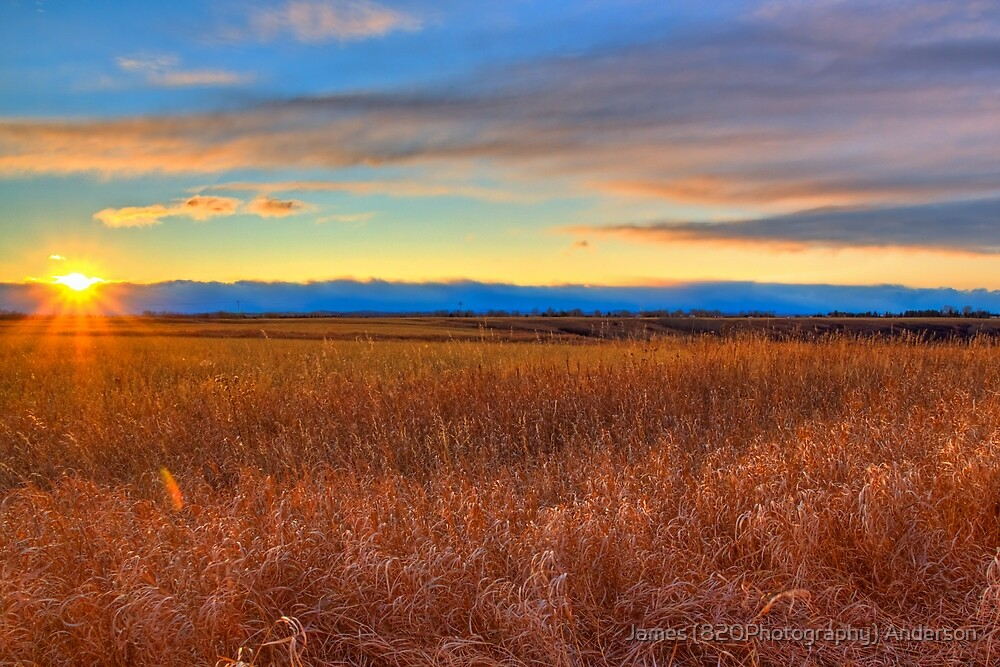 Prairie Sunset  by James Anderson