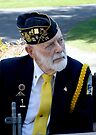 Old Soldier by Dave Davis