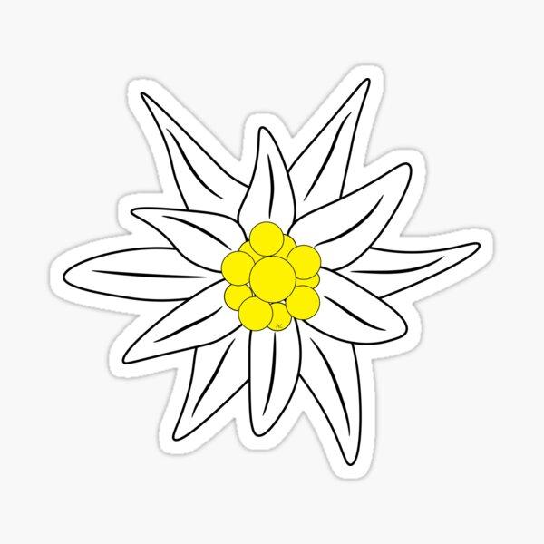 Edelweiss flower Sticker