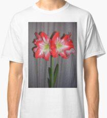Amaryllis Classic T-Shirt