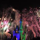 Magic Kingdom Fireworks  by Jill Szczesny