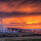 Steam Vents by Peter Hammer