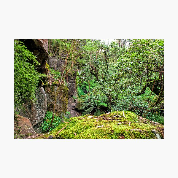 The Rocky Path Photographic Print
