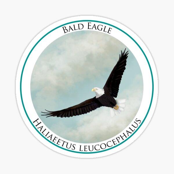 Bald Eagle Badge Sticker