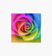 Rainbow Rose Art Board
