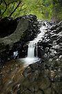 Lava Falls, Maui by Michael Treloar