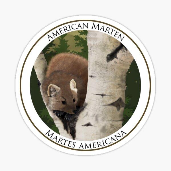 American Marten Badge Sticker