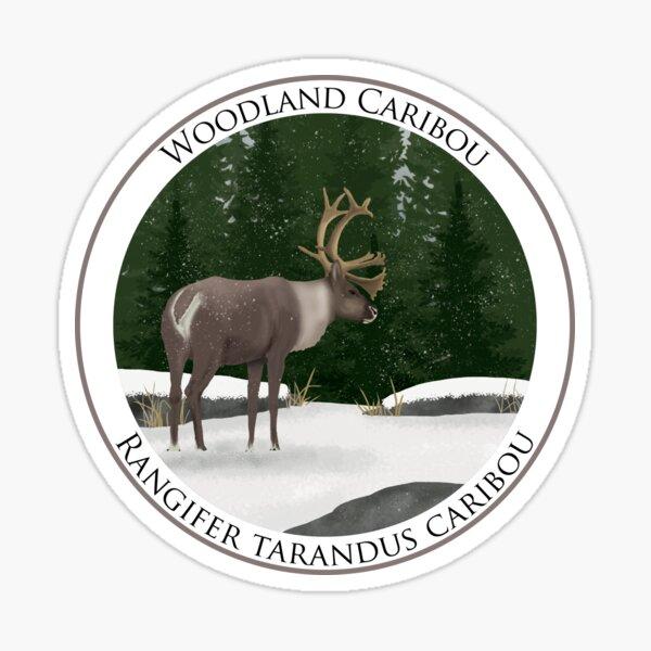 Woodland Caribou Badge Sticker