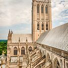 Magnificent Cathedral III by Raymond Warren