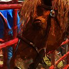 Rodeo Horse Abstract Impressionism by pjwuebker