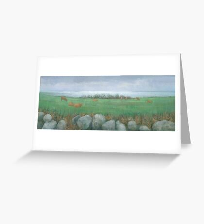 Tresco Cows Greeting Card