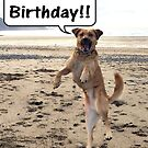 Happy Dog - Happy Birthday by Peter Barrett