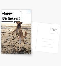 Happy Dog - Happy Birthday Postcards