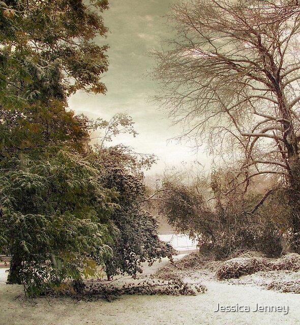 November Snow by Jessica Jenney