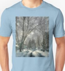 Brookline after Blizzard Nemo T-Shirt