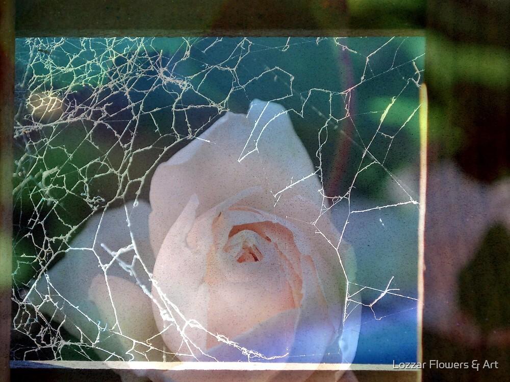 Embedded by Lozzar Flowers & Art