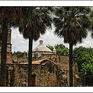 Mission Concepcion by Colleen Drew