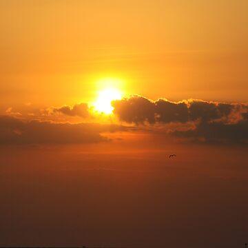 Gulfport Sunset US by ruben