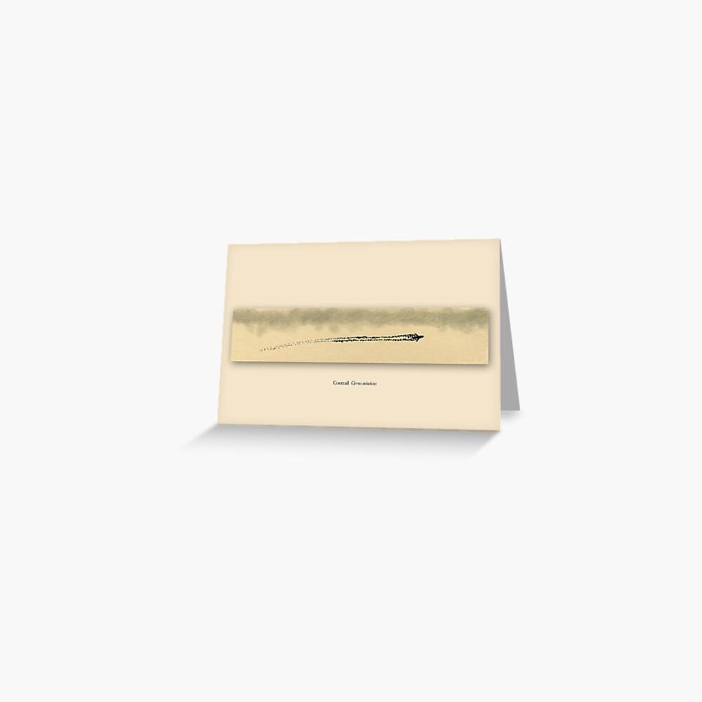 Contrail - Cirrus aviaticus Greeting Card
