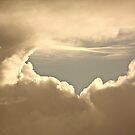 NUAGE #147 by Laura E  Shafer