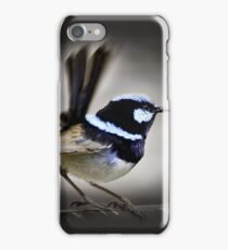 Superb Blue Fairy Wren iPhone Case/Skin