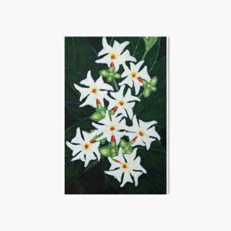 Night Jasmine (Acrylic Art) Art Board Print