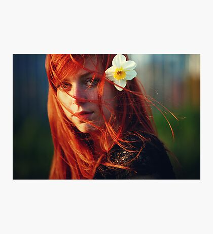 Brightness Photographic Print