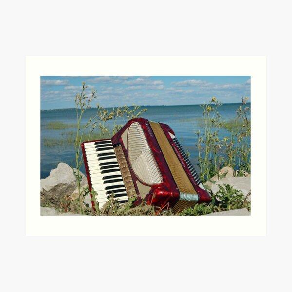 Red Accordion Art Print